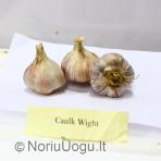 Žieminis česnakas Caulk Wight 200 g
